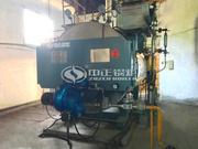 2吨WNS系列冷凝式燃气蒸汽锅炉项目(温氏家禽)
