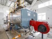8吨WNS系列冷凝式燃气蒸汽锅炉项目(绝味食品)