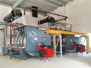 12吨WNS系列冷凝式燃气蒸汽锅炉项目(永兴新能源)