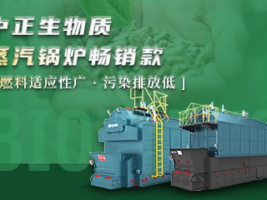 中正生物质蒸汽锅炉畅销款 燃料适应性广 污染排放低