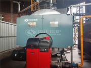 四海染整10吨WNS系列天然气蒸汽锅炉项目