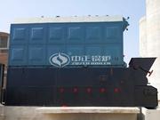 巴基斯坦饲料行业8吨/时SZL燃煤链条炉项目