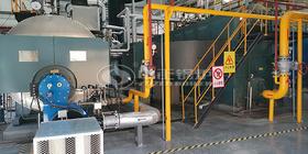 中正锅炉全方位专业服务 助饮料龙头企业顺利通过环保测评