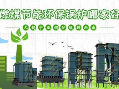 燃煤节能环保锅炉哪家好  www.lehu168.com脱颖而出