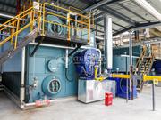 海大集团25吨和20吨SZS系列环保型燃气蒸汽锅炉项目