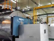 宜兴新威利成稀土6吨WNS系列冷凝式燃气蒸汽锅炉项目