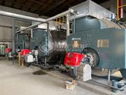 吉林德大6吨WNS系列二回程燃气蒸汽锅炉项目