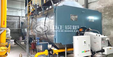 宏大纺织印染10吨WNS系列节能型燃气蒸汽锅炉具体参数