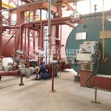 戴瑞克新材料180万大卡YQW系列燃气有机热载体锅炉项目