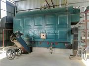 马来西亚快乐联盟4吨DZL系列快装生物质蒸汽锅炉项目
