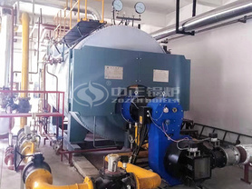 福民生物6吨WNS系列三回程冷凝式燃气蒸汽锅炉项目