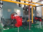 华欧淀粉6吨和2吨WNS系列冷凝式燃气蒸汽锅炉项目