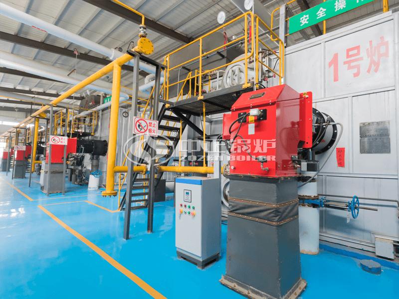 18吨SZS系列冷凝式燃气蒸汽锅炉项目(锦宝石集团)