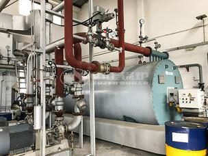 卓宝科技300万大卡YQW系列燃气卧式导热油锅炉项目