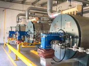 吉林正大120万大卡YQW系列燃气卧式导热油锅炉项目