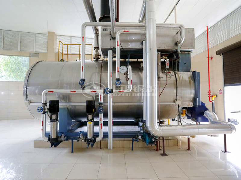 6吨WNS系列冷凝式燃气蒸汽锅炉项目(李记酱菜)