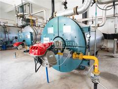200万大卡YQW系列燃气卧式导热油锅炉项目(三易食品)