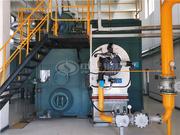 河北安国现代中药工业园40吨SZS系列低氮燃气蒸汽锅炉项目