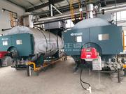 上海市青少年实践活动金山基地4.2MW WNS系列燃气热水锅炉项目