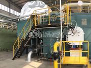 金光纸业20吨SZS系列蒸汽锅炉煤改气项目