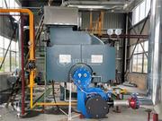 江苏大力神科技4吨WNS型二回程天然气蒸汽锅炉项目