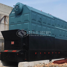 横扇新艺织造15吨DZL系列生物质蒸汽锅炉项目