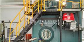 鸭脖娱乐官网燃气锅炉服务浙江企业 品质性能在各行业表现抢眼