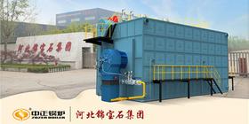 鸭脖娱乐官网SZS系列沼气锅炉点火一次成功 助力年产80万吨包装装饰新材料项目