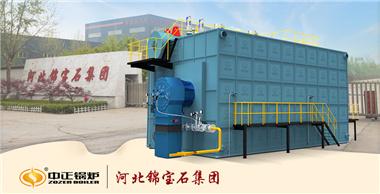 亚博app下载安装SZS系列沼气锅炉点火一次成功 助力年产80万吨包装装饰新材料项目