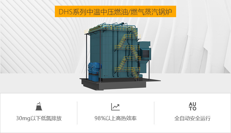 鸭脖娱乐网页版锅炉DHS系列燃气锅炉