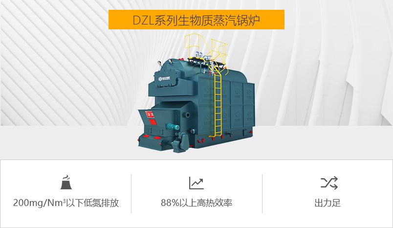 亚博app下载安装锅炉DZL系列生物质蒸汽锅炉